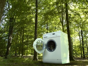Green Wash by Novozymes detergent enzymatic technology
